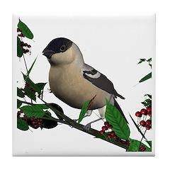 Bullfinch (female) Tile Coaster