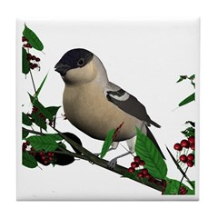 Bullfinch (female) Tile Coaster