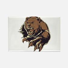 Wild Bear Magnets