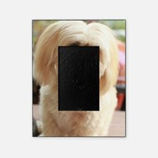 Funny Blond Picture Frame