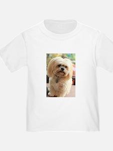 Koko blond lhasa T-Shirt