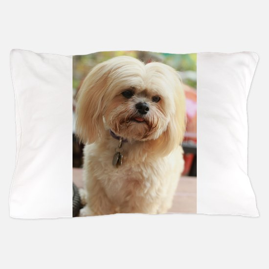 Koko blond lhasa Pillow Case