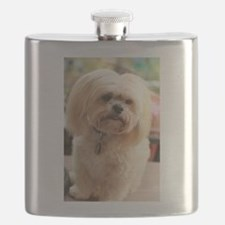 Koko blond lhasa Flask