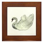 Mute Swan Framed Tile