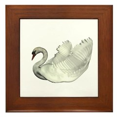 Mute Swan Framed Tile