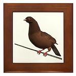 Brown Rock Dove Framed Tile