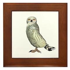 Snow Owl Framed Tile
