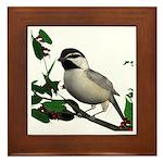 Mountain Chickadee Framed Tile
