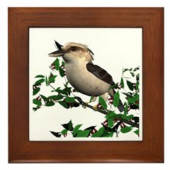 Kookaburra Framed Tile