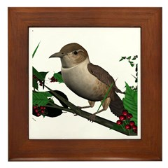 House Wren Framed Tile