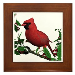 Cardinal (male) Framed Tile