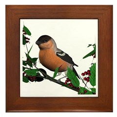 Bullfinch (male) Framed Tile