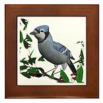 Blue Jay Framed Tile