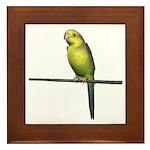 Yellow Faced Parrot Framed Tile