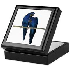 Hyacinth Macaw (Pair) Keepsake Box