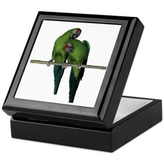 Military Macaw (Pair) Keepsake Box