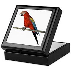 Scarlet Macaw Keepsake Box