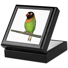 Black Cheeked Lovebird Keepsake Box