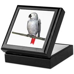 Congo African Grey Keepsake Box