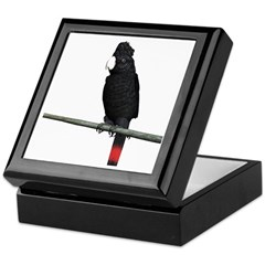 Redtail Black Cockatoo Keepsake Box