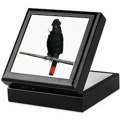 Redtail Black Cockatoo Keepsake Box