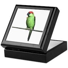 Thick Bill Parrot Keepsake Box