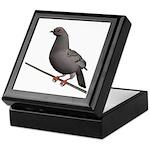 Checkered Rock Dove Keepsake Box
