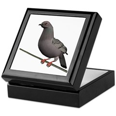 Checkered Rock Dove Keepsake Box
