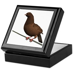 Brown Rock Dove Keepsake Box