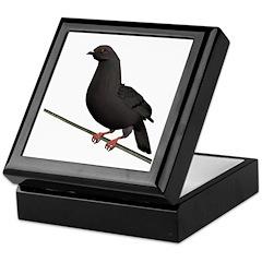 Dark Rock Dove Keepsake Box
