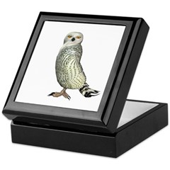 Snow Owl Keepsake Box