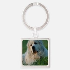 Cute Pyr Square Keychain