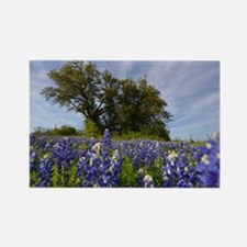 Blue lupine Rectangle Magnet