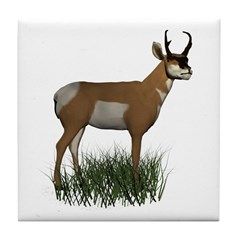 Pronghorn Tile Coaster