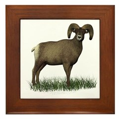 Big Horn Sheep Framed Tile