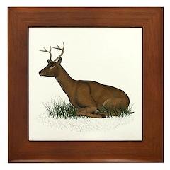 Deer (buck) Framed Tile