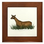 Deer (doe) Framed Tile