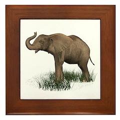 Elephant (baby) Framed Tile