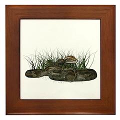 Python Framed Tile