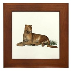 Puma Framed Tile