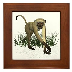 Monkey Framed Tile