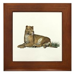 Lioness Framed Tile