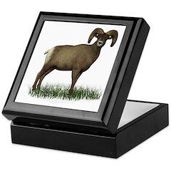 Big Horn Sheep Keepsake Box