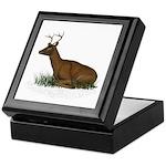 Deer (buck) Keepsake Box