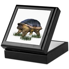 Snapping Turtle Keepsake Box