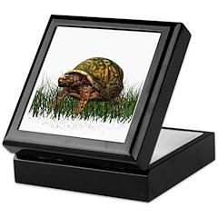 Box Turtle Keepsake Box