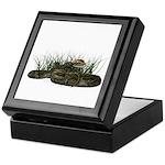 Python Keepsake Box