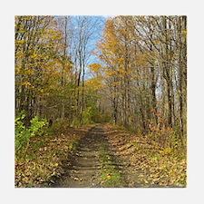 Hiking Trail In Autumn Tile Coaster