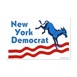 New York Democrat Mini Poster Print