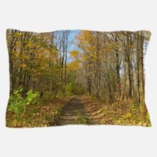 Hiking Trail In Autumn Pillow Case